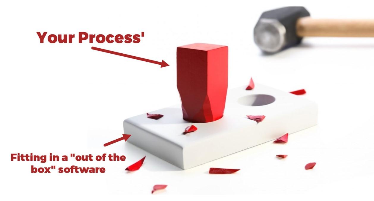 custom Project Management Information System
